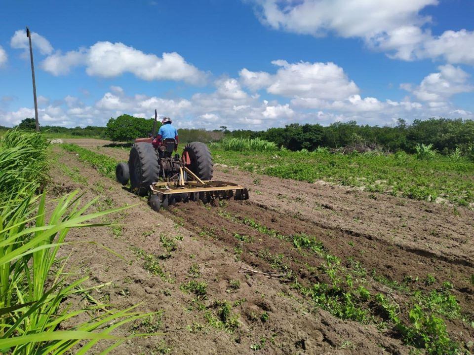 Sec. de Agricultura e EMPAER realizaram entregas de sementes a agricultores.